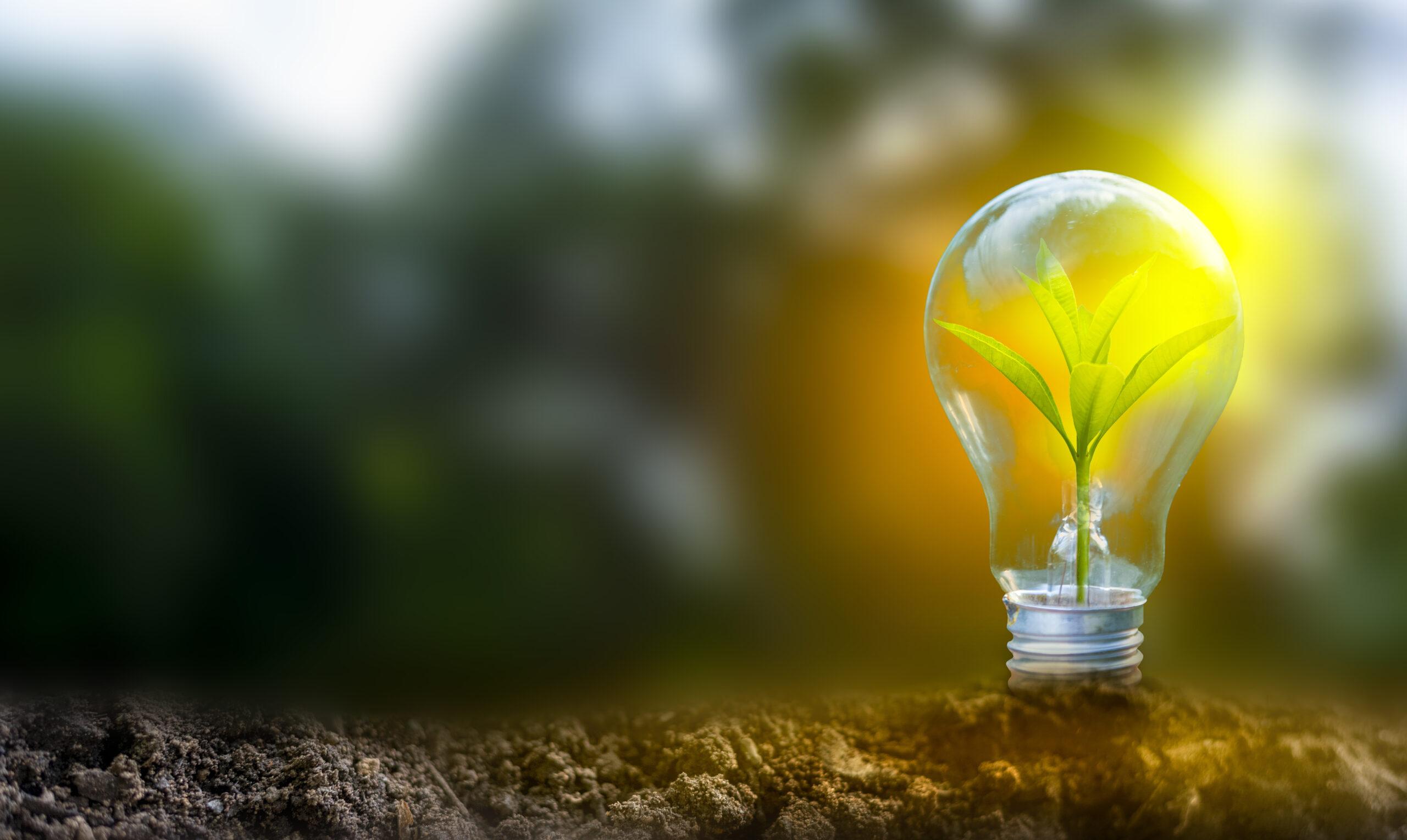 Odnawialne źródła energii w domu jednorodzinnym