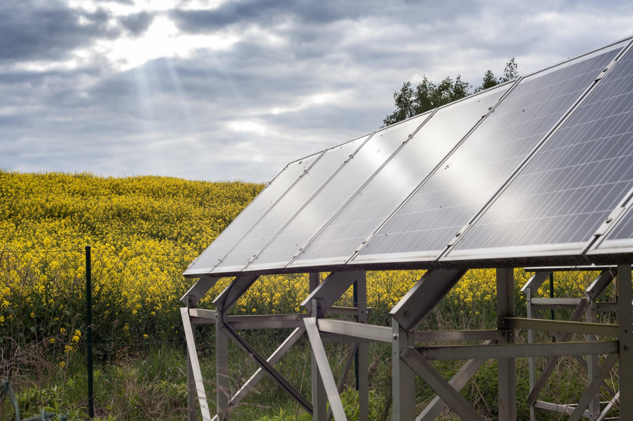 Wpływ temperatury na sprawność paneli fotowoltaicznych